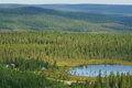 Endless forest hills and forests in northern finland lapland Stock Photo
