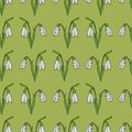 Seamless background of vector snowdrops on green background.