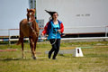 Endurance riding championship vet check Royalty Free Stock Photos
