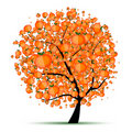 Energy citrus tree for your design Royalty Free Stock Photography