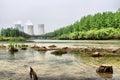 image photo : Energy generation and environmental damage