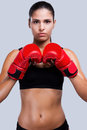 Energy inside her attractive young sporty woman in boxing gloves looking art camera while standing against grey background Stock Photography