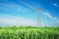 Energy and overhead powerline Royalty Free Stock Photo