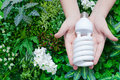 Energy saving concept, Woman hand holding light bulb on green nature background