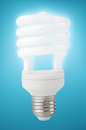 Energy saving fluorescent light bulb Royalty Free Stock Photography