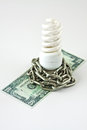 Energy saving lamp and money Stock Images