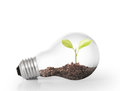 Energy saving light bulb ideas Stock Photo