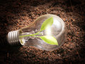 Energy saving light bulb ideas Royalty Free Stock Images