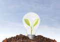 Energy saving light bulb ideas Royalty Free Stock Photos
