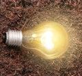 Energy saving light bulb ideas Stock Images