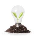 Energy saving light bulb ideas Stock Photos