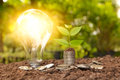 Energy saving light bulb and tree growing on stacks of coins on Royalty Free Stock Photo