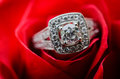 Engagement ring on red rose Royalty Free Stock Photo