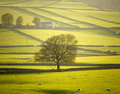England derbyshire peak district national park Stock Image