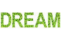 English alphabet of DREAM. made from green grass on white background for isolated Royalty Free Stock Photo