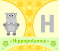 The english alphabet h with hippopotamus Royalty Free Stock Photo
