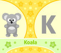The english alphabet k with koala Royalty Free Stock Photos