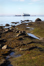 English Bay Shore and Freighters Royalty Free Stock Photo