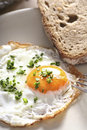 English breakfast egg and bread Stock Photography