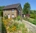 English cottage with colourful cottage garden and wall. Royalty Free Stock Photo