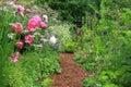 English cottage garden Stock Image