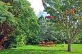 English country garden Stock Image