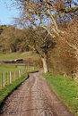 An English country Lane in early Winter with Track Stock Image