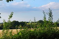 English countryside, rural scene, beautiful landscape Royalty Free Stock Photo
