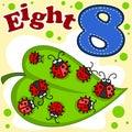 English digit eight.