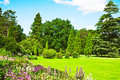 English garden Royalty Free Stock Image