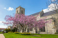 English parish church blossom tree in the churchyard of st nicholas in wells next the sea norfolk uk Royalty Free Stock Images