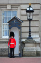 English Queen's Guard, London Royalty Free Stock Photo