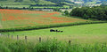 An English Rural Landscape in the Chiltern Hills Royalty Free Stock Photo