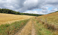 An english rural landscape in the chiltern hills with track between fields of golden wheat stubble Royalty Free Stock Photography