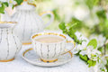 English tea spring garden Stock Photos