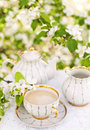 English tea spring garden Stock Photography