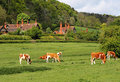 An English Village Landscape Stock Photos