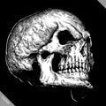 Engrave human skull hand drawn graphic vector illustration
