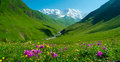 Enguri river valley near ushguli georgia svaneti shkhara mountain in the background Royalty Free Stock Photos