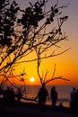 Enjoying sunset, La Jolla Cove, California