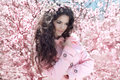 Enjoyment portrait of beautiful woman posing over pink spring c cherry blossoms time Royalty Free Stock Photo