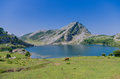 Enol lake covadonga asturias spain Stock Photo
