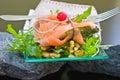 Ensalada con los salmones y asparagu Imagen de archivo libre de regalías