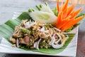 Ensalada picante tailandesa de la carne picadita Foto de archivo libre de regalías