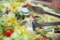 Ensalada vegetariana sana Fotografía de archivo libre de regalías