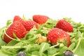 Ensalada w/berries del Arugula y upclose nuts Imágenes de archivo libres de regalías