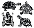 Ensemble de tortues Image stock