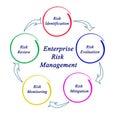 Enterprise Risk Management Royalty Free Stock Photo