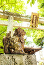 Entrance gate in Japanese temple Royalty Free Stock Photo