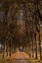 Entrance To Autumn Royalty Free Stock Image